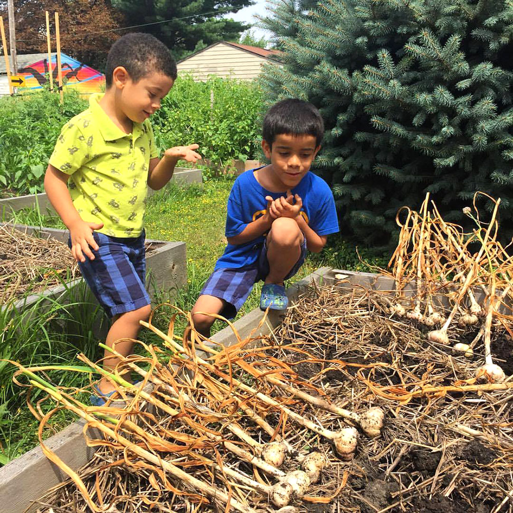 Cleveland Roots - urban agriculture and educational programs